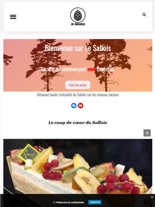 Page accueil le sallois